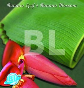 Banana Leaf+Banana Blossom